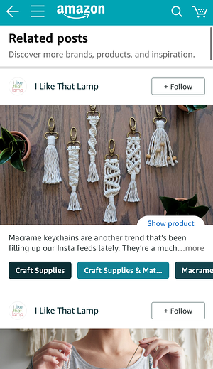 The white 'Follow' button appears next to the brand name on the Posts feed