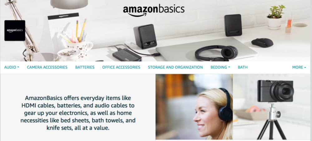 This sample page from AmazonBasics, one of Amazon's private label brands, shows what a brand page looks like.